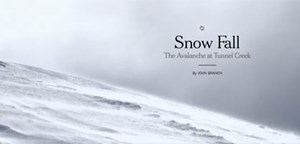 "Bestes Feature: Die Reportage ""Snow Fall"" der ""New York Times"""