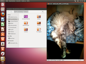 Ansonsten unterscheidet sich der Desktop von Ubuntu 13.04 nur geringfügig von der Vorgängersaison.