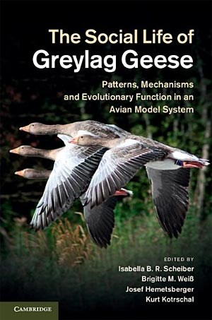 """The Social Life of Greylag Geese - Patterns, Mechanisms and Evolutionary Function in an Avian Model System"", von Isabella Scheiber, Brigitte Weiß, Josef Hemetsberger und Kurt Kotrschal (Hrsg.)
