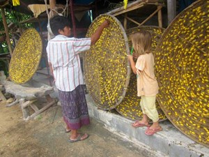 Villagers inspect cocoons during the silk production process.