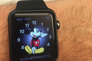 Die Apple Watch Sport