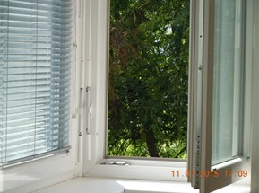 Grüner Ausblick Panoramafenster
