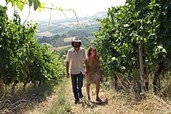 Bedrohung ursprünglicher Weinproduktion im Mittelpunkt