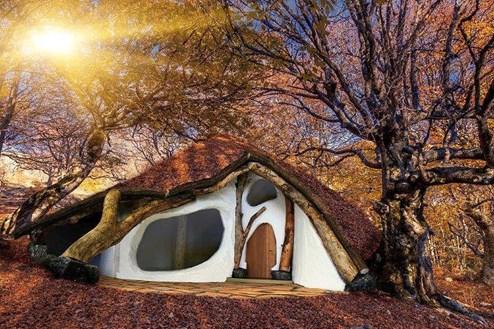 Ein Haus aus einem einzigen Baum - Design & Interieur ...