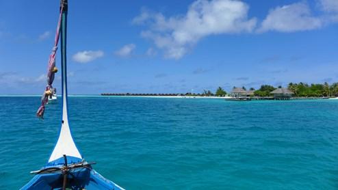 Malediven das leben in einer fototapete