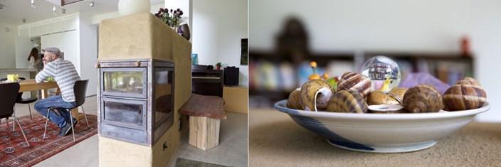 meine schnecken werden mich begleiten wohngespr ch immobilien. Black Bedroom Furniture Sets. Home Design Ideas