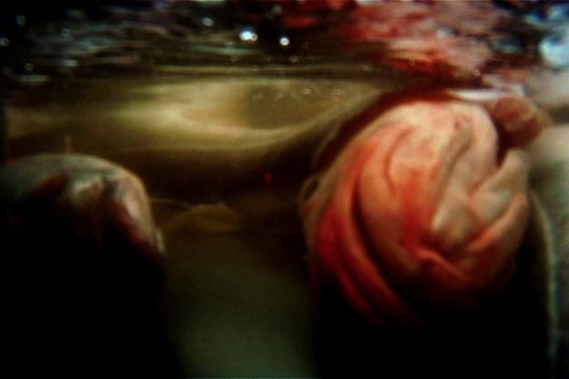 http://images.derstandard.at/t/M625/Movies/2012/16920/151103124057316_44_aufm06.jpg