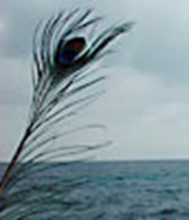 http://images.derstandard.at/t/M625/movies/2003/6504/160317120037792_17_il-mare-e-la-torta_5.jpg