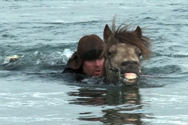 http://images.derstandard.at/t/M625/movies/2013/20403/160612230135674_7_von-menschen-und-pferden_aufm03.jpg