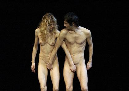 Американские голые терьеры на выставке