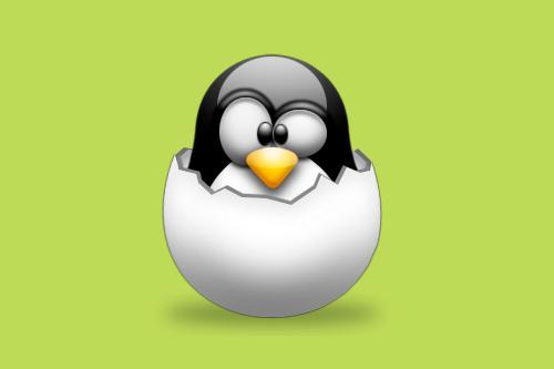 Klub-Pinguin datiert yahoo Antworten