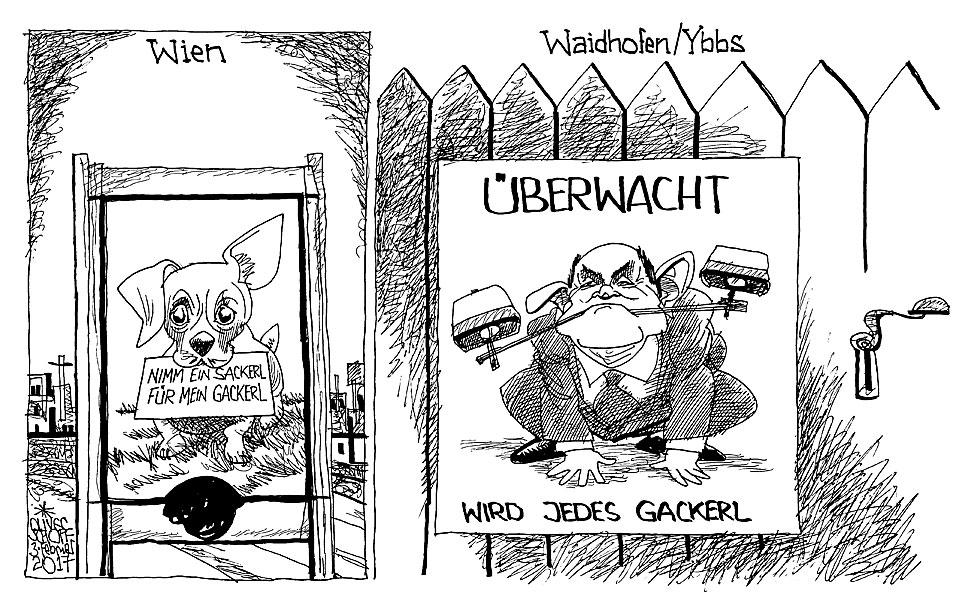 Gegenteil Von Narzissmus Waidhofen An Der Ybbs