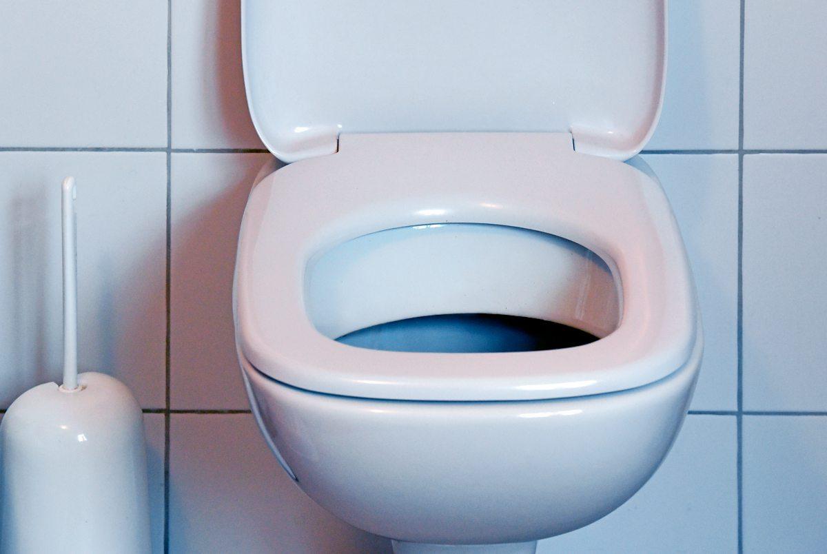 manhattan ffentliche luxus toiletten sind neuester hit usa reise lifestyle. Black Bedroom Furniture Sets. Home Design Ideas