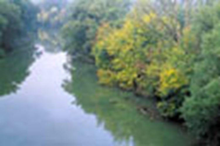 Der Weg zum Junior Ranger - Donau-Auen Junior Ranger