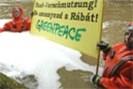 foto: greenpeace/ gabor sioreti