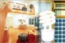 collage: standard/friesenbichler