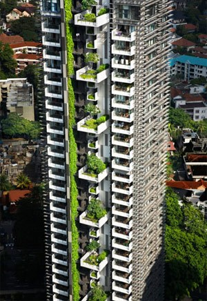 ... die Newton Suites in Singapur (aus 2007).