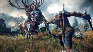"""The Witcher 3: Wild Hunt"""