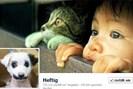 foto: screenshot/facebook.com/heftig.co