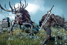 """foto: """"the witcher 3"""""""