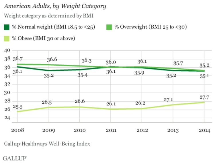 Usa übergewicht