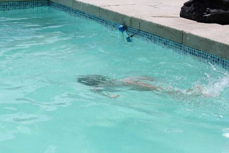 Darling Ich Bin Im Pool Garten Derstandard At Lifestyle