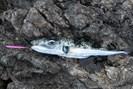 foto: wikipedia/martin/fishbase.us/