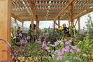 foto: irene zluwa, iblb ag vegetationstechnik, boku wien