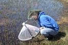 foto: lauren culler