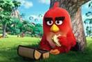 bild: angry birds movie