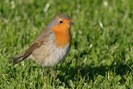 foto: universität oldenburg