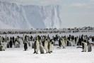 foto: british antarctic survey