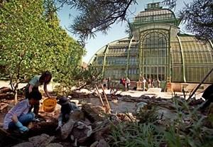 Botanischer Garten In Schönbrunn Könnte Bald Eintritt Kosten 13