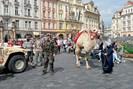 foto: apa picture desk / čtk / markéta horešovská