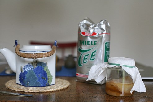 Red Bull Kühlschrank Willhaben : Kombucha: das getränk das bemuttert werden will gruß aus der