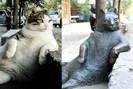 foto: anatolian cat project