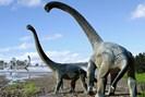 illustr.: travis tischler/australian age of dinosaurs museum