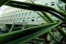 foto: standard/corn