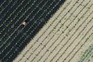 foto: apa/julian stratenschulte