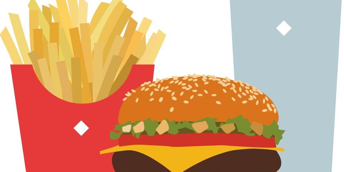 fettreiche ernahrung bremst hirnreifung gesunde ernahrung derstandard at gesundheit