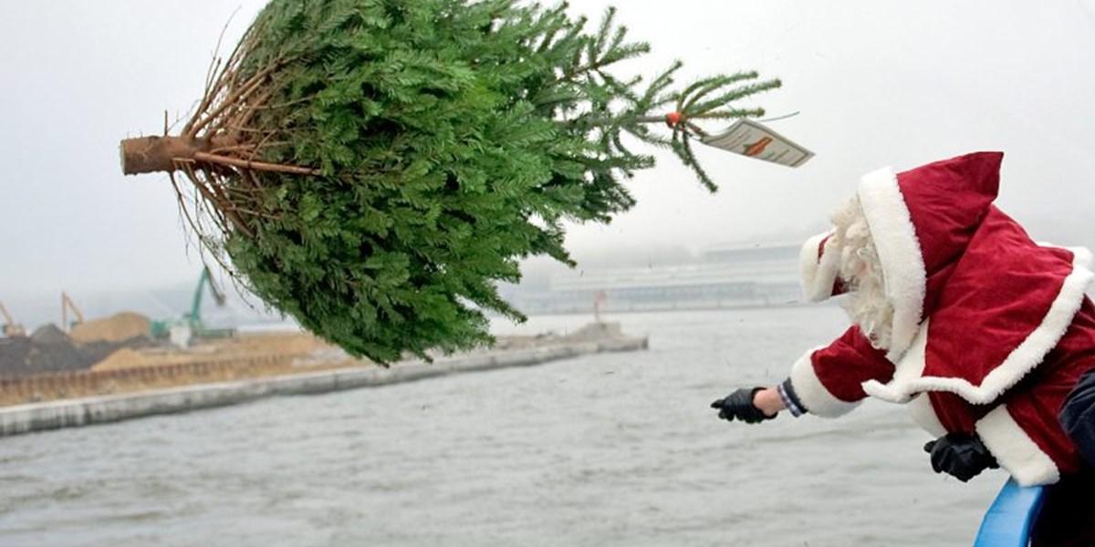 Weihnachten feiern ohne Religion – geht das? - Mitreden: Leben mit ...