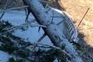 foto: apa/feuerwehren bfvgu abschnitt 6