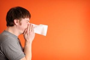 cortison nasenspray nasonex