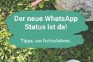 foto: whatsapp