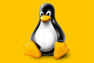 grafik: linux foundation