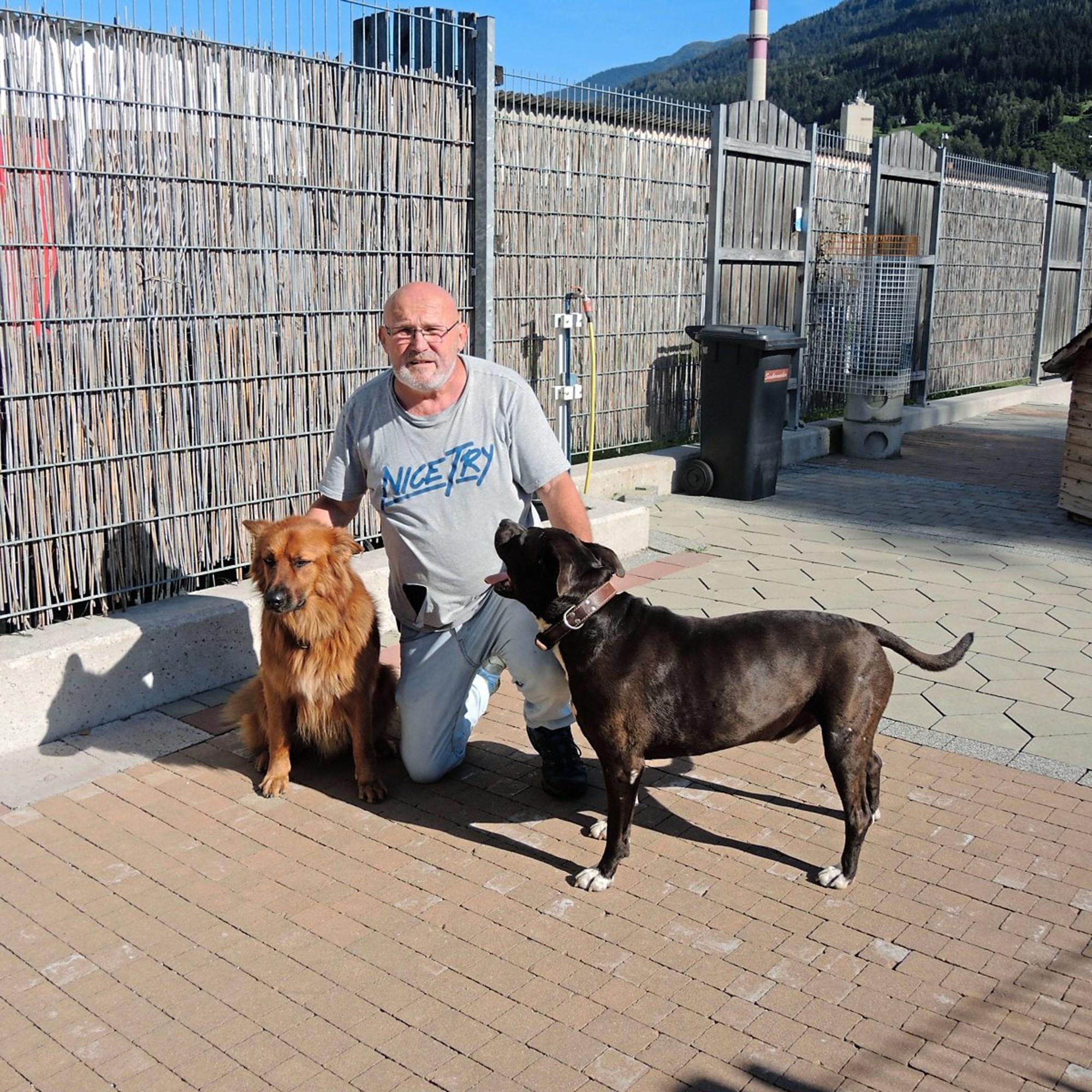 SmoothieDog: Ein Smoothie für Hunde - MORITZ Stadtmagazin