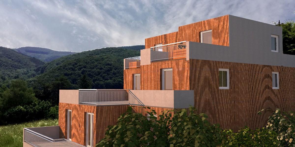 Holzbau Leben Zwischen Wohnbau Und Almhutte Wohnen In Und
