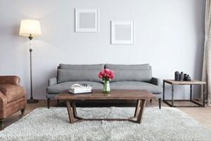 Komfortabel Oder Unnotig Wunschen Sie Sich Eine Moblierte Wohnung
