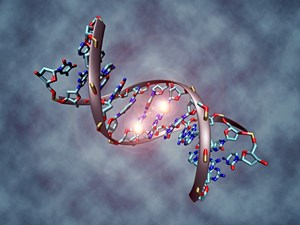 Epigenetik und Krebs: Von Zellen, die ihr Gedächtnis verlieren