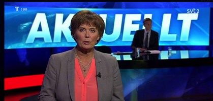foto: svt 2 screenshot